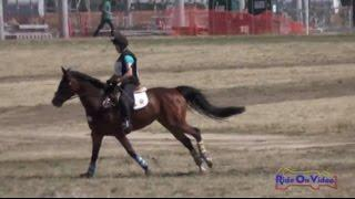 109XC Faith Dalessandro on Spurs and Stelittos YR Novice Cross Country FCHP April 2015