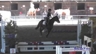 081E1 Toni Harmon on Goo Goo Doll Intro Eventing Pacific Indoor Eventing October 2014
