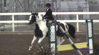 174S Anika Baker on British Air JR Beginner Novice Show Jumping FCHP November 2014