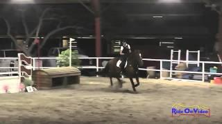 079E1 Michelle Capparelli Training Eventing Pacific Indoor Eventing October 2014