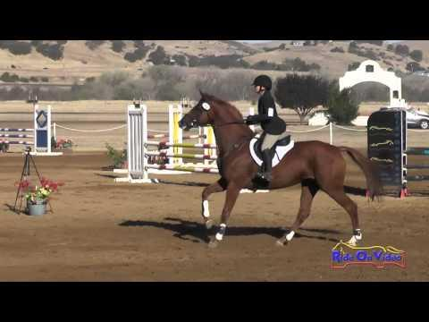 091S Natalie Rooney On LaCoura Training Horse Show Jumping Twin Rivers Ranch September 2015