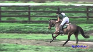 058XC Kiersti Wylie on Justice For All Preliminary Rider Cross Country Galway Downs Feb. 2015