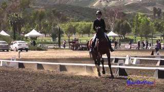 189D Tommy Greengard on Colonial Art JR Training Dressage Galway Downs Int'l Event March 2014