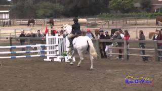 023S Lauren Jamison on Candy Junior Training Rider Stadium Shepherd Ranch August 2014