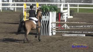 165S Katie Patton on Gwendolyn Open Training Show Jumping FCHP February 2015