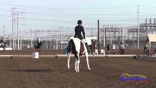 006D Erin Murphy on Athlone Travel On Intermediate Dressage Fresno County Horse Park Oct 2014