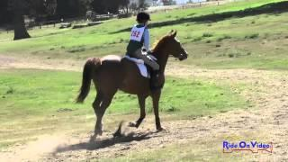 252XC Sophie Bluhm On Hunky Dory Intro Cross Country Shepherd Ranch June 2015