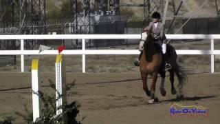 092S Alexandra Eastman on Gaelic Blessing SR Novice Show Jumping FCHP November 2014
