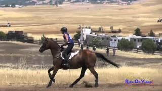 109XC Marcia Smith On King Con Open Beginner Novice Cross Country Camelot July 2015