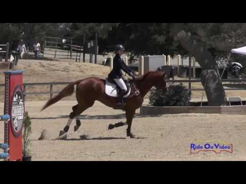 050S Maxelle Phillips On Rhythm Royale Open Preliminary Show Jumping Woodside August 2016