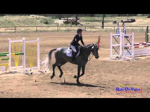 130S Maddy Mazzola JR/YR Open Preliminary Show Jumping Twin Rivers Ranch April 2016