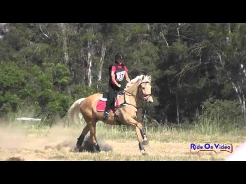 037XC Haley Turner On Orion's Sweet Rubio JR Training Cross Country FCHP April 2016
