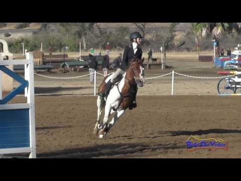 439S Haley Kenney On Golden Splash JR Training Show Jumping Twin Rivers Ranch Sept. 2016
