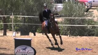 104S Auburn Excell Brady On Excessive Bling Open Training Show Jumping Copper Meadows June 2015
