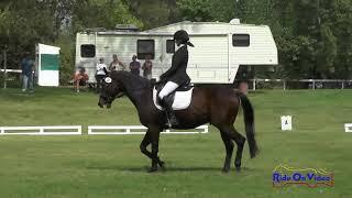 034D Brianna Davis on Palace Verdes JR Dressage Eventful Acres September 2017