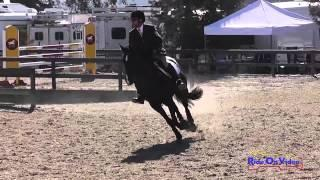 189S Gabriel Aguilar Area VI Championships Training Rider Show Jumping Woodside Int'l Event Oct 2014