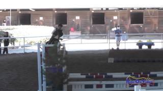 081J2 Toni Harmon on Goo Goo Doll Beginner Novice Jumping Pacific Indoor Eventing October 2014