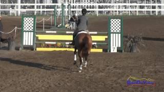 129S Mallory Hogan on Clarissa Purisima YR Training Show Jumping FCHP February 2015