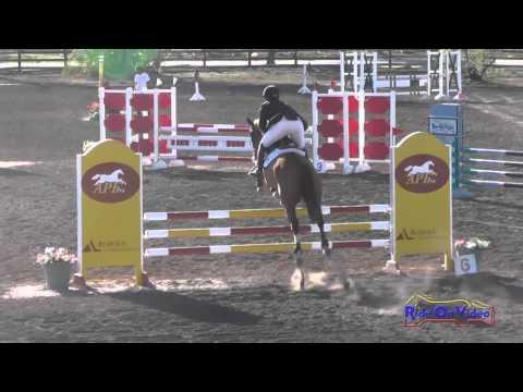 117S John Michael Durr On Danito Training 3-Day Show Jumping Galway Downs November 2015