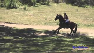 144XC Tracy Alves On Romulus SR Training Cross Country Shepherd Ranch June 2015