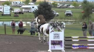 255S Marc Grandia On Ghost Flight SR Training Show Jumping The Event At Rebecca Farm July 2015