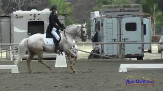 040D James Alliston on Pandora CCI1* Dressage Galway Downs Nov. 2017