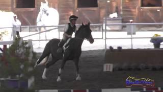 050E1 Jack Gaon on Little Croc Beginner Novice Eventing Pacific Indoor Eventing October 2014