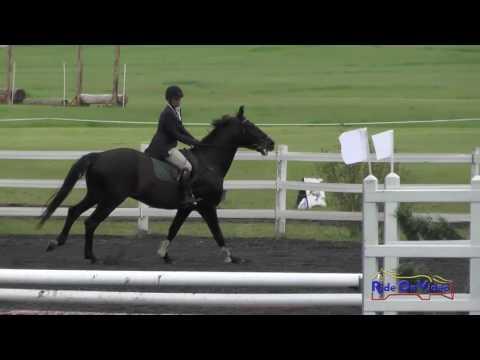 147S Sarah Broussard On Ultimo D'Amerloo SR Novice Show Jumping Spokane Sport Horse HT May 2016