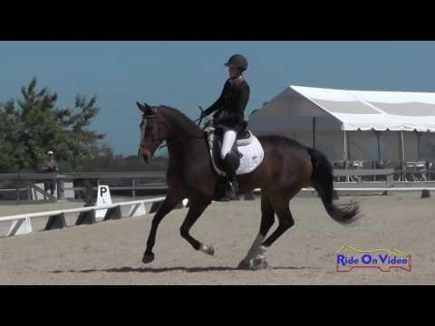 Woodside May 2016 Preliminary Challenge Dressage Coverage