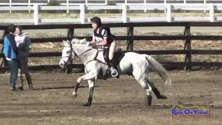 025XC Tosca Holmes Smith on Paddington CCI1* Cross Country Galway Downs Int'l Event Nov 2014