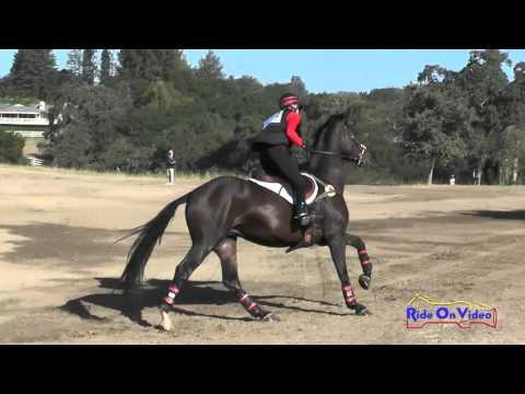 112XC Kayleen Crowley On Whiskey Up Preliminary Rider Cross Country Woodside Oct 2015