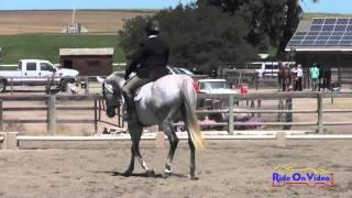 105D Staci Hill on Platinum CF Senior Intro Cross Country Shepherd Ranch August 2014