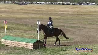 411XC Nadia Vogt on Street Melody JR Beginner Novice Cross Country Twin Rivers Ranch 2019