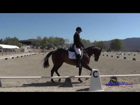 324D Josh Barnacle On CTR Trastevere Open Beginner Novice Dressage Woodside August 2016