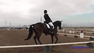 045D Madelyn Holtzman Preliminary Rider Dressage Fresno County Horse Park Oct 2014