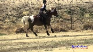 145XC Emily Robertson on June Bug Open Novice Cross Country FCHP April 2015