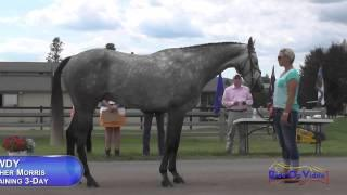 210J2 Heather Morris On Get Rowdy Training 3-Day FEI Jog 2 The Event At Rebecca Farm July 2015
