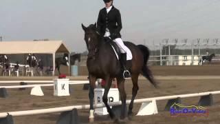 059D Lexi Vallier on Shane's Friend YR Training Dressage Fresno County Horse Park Oct 2014.
