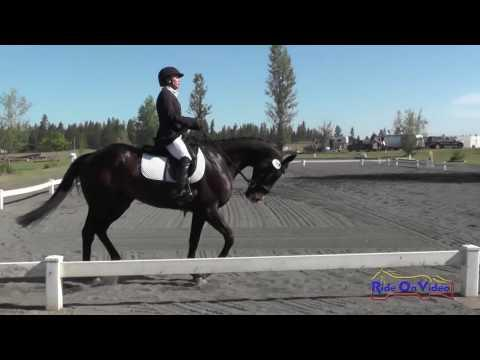 280D Cindy Marvin On Fool Me Once SR Preliminary Dressage Spokane Sport Horse HT May 2016