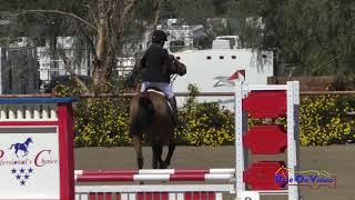 198S Helen Mcmillan on begley of arklow Intro Show Jumping Copper Meadows March 2019