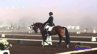 113D Robyn Fisher on With Class Preliminary Dressage Copper Meadows September 2014
