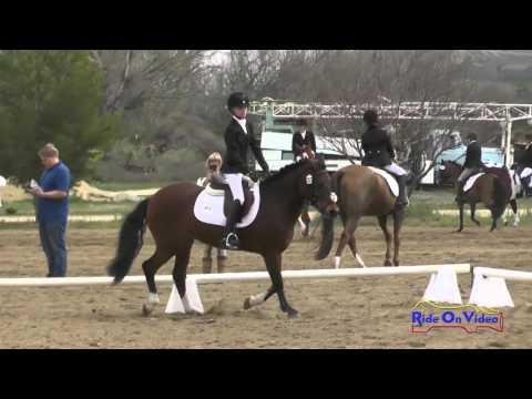 283D Sophia Rich On Breakfast At Tiffany's Intro Dressage Twin Rivers Ranch March 2016