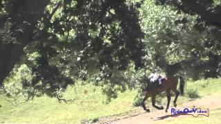 088XC Kelly Pugh On Corazon Open Preliminary Cross Country Shepherd Ranch June 2015