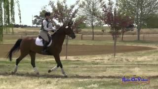 431J Tina Waters on Peregrine SF YEH 5Yr Old Jumping Twin Rivers Ranch April 2015