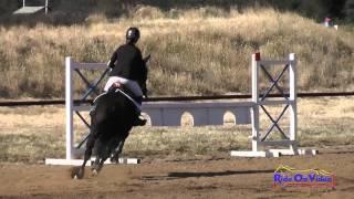 163S Mikyla Schmidt on Shotgun Express JR Training Show Jumping Twin Rivers Ranch April 2015
