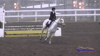 152S Seraphina Dellavalle on Glorious Purpose JR Beginner Novice Show Jumping FCHP November 2014