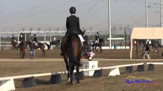 056D Tommy Greengard on Colonial Art YR Training Dressage Fresno County Horse Park Oct 2014