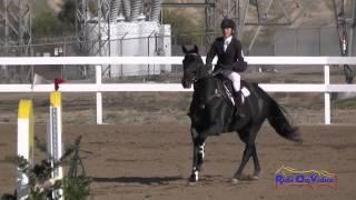 019S Pascale Winnick on Talisker Preliminary Rider Show Jumping FCHP November 2014