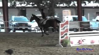 061J2 Luna Souchard on Dear John Training Jumping Pacific Indoor Eventing October 2014