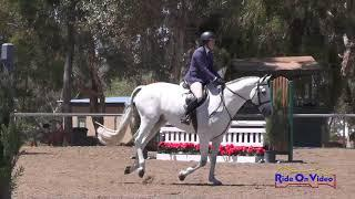 426 Jacqueline Attwood Dupont on Spotlight 111C AM Owner Hunters 3'6 TVNHS April 2018